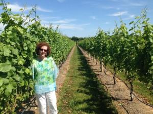 randi-glazer-winery